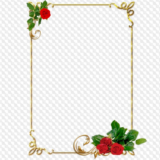 Clipart, gold frames, with red roses, PNG format.