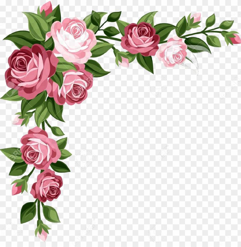 flores formato png clipart transparent.