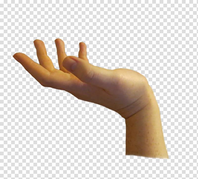 Hands manos en formato, opened hand transparent background.