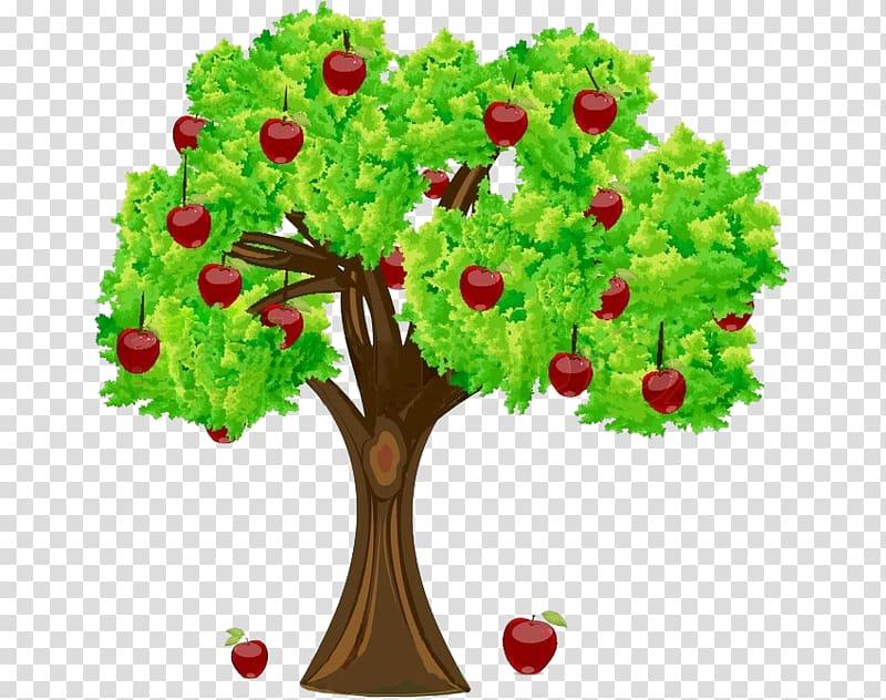 Apple Fruit tree , apple transparent background PNG clipart.