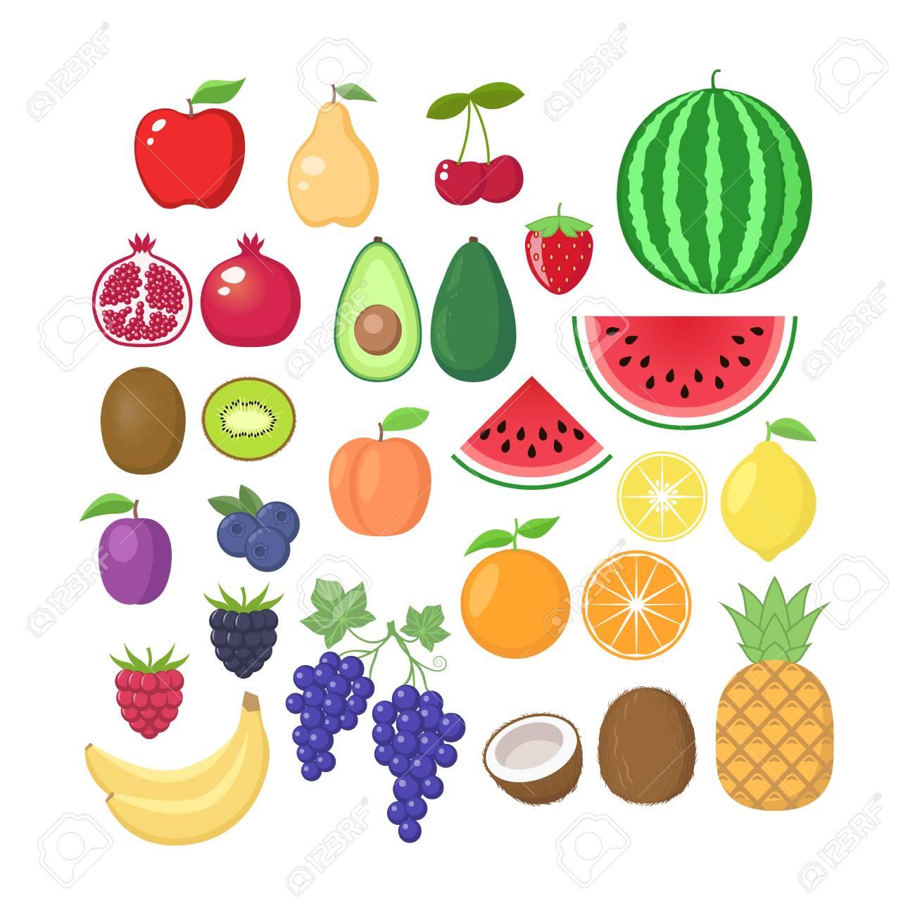Various fruit collection. Vector fruits cartoons set. Fruit clipart..