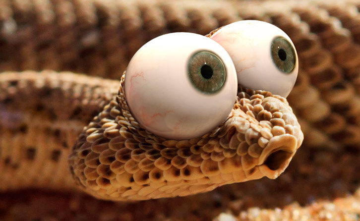 Large Eyes Snake Showing Tooth Funny Clipart.