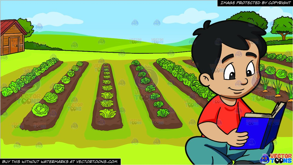 A Boy Reading A Novel and A Vegetable Garden Background.