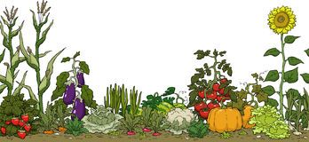 Garden clip art border free free clipart images.