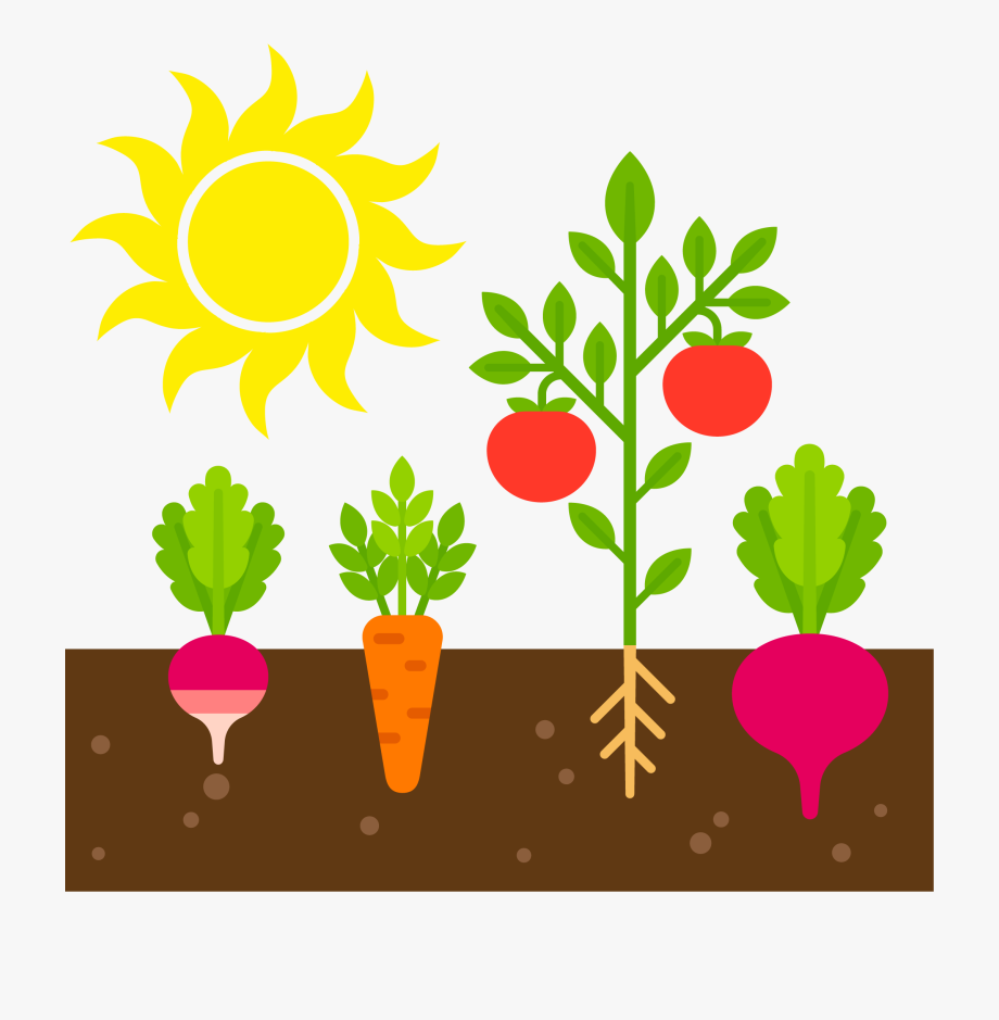 Vegetable Garden Clipart, Cliparts & Cartoons.