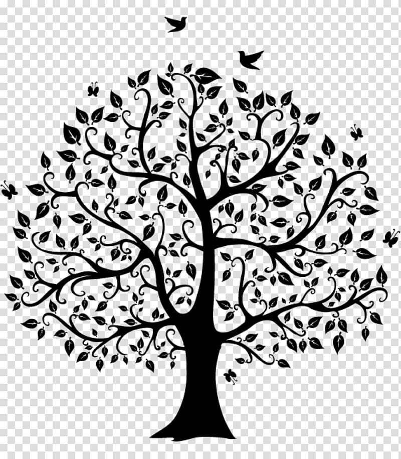 Family tree Genealogy , blackish transparent background PNG.