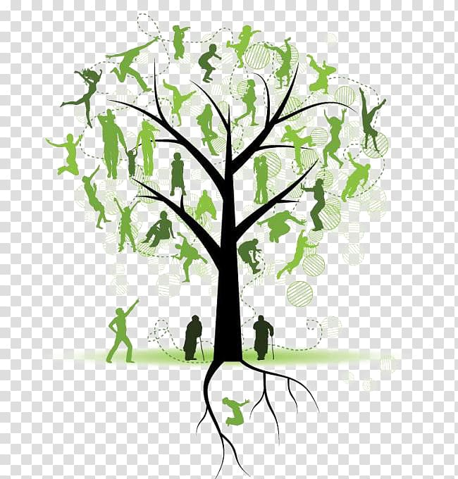 Family tree Genealogy , Tree Silhouette transparent.