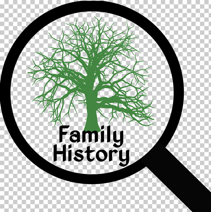 Genealogy Family tree Ancestor History, family tree PNG.