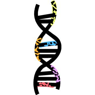 Free Gene Cliparts, Download Free Clip Art, Free Clip Art on.