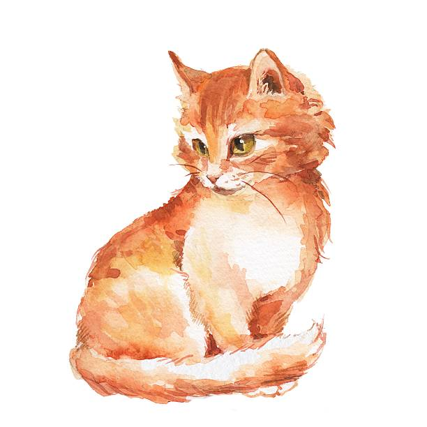 Top 60 Orange Cat Clip Art, Vector Graphics and Illustrations.