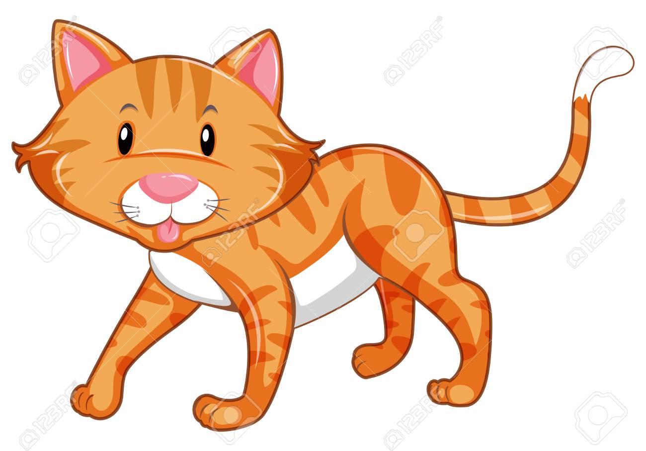 Ginger cat walking on white background illustration.