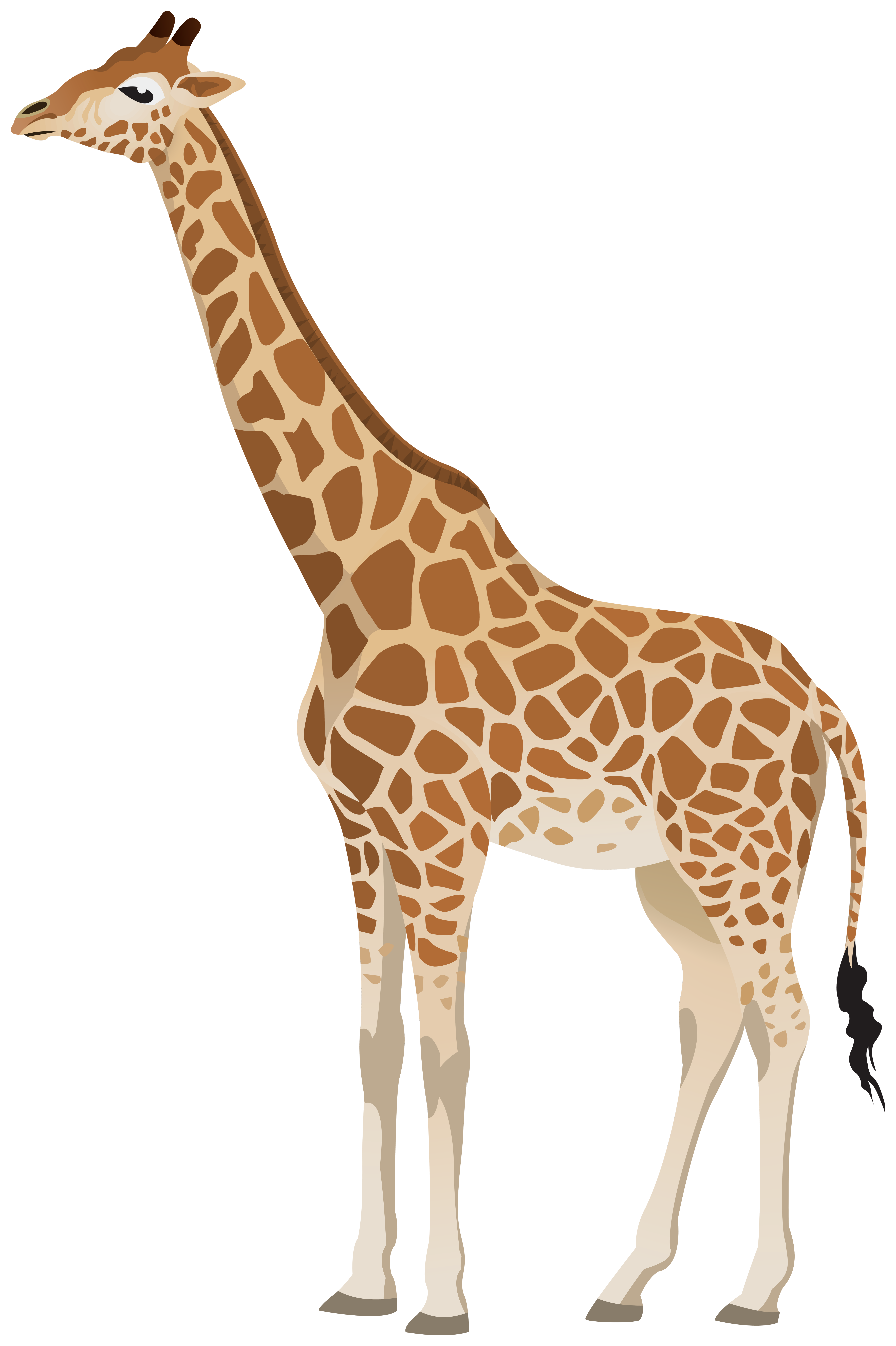 Giraffe Clipart Image.