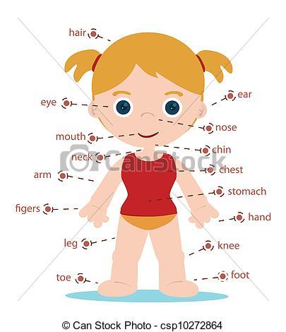 girl body parts.