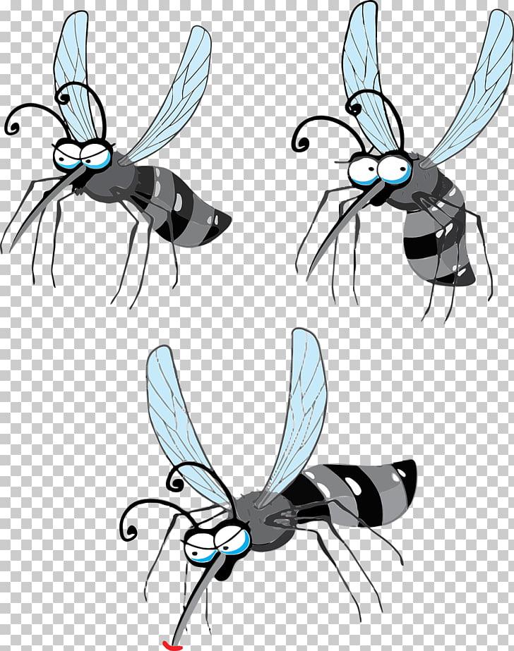 Gnat Zika virus Crane fly Yellow fever mosquito , mosquito.
