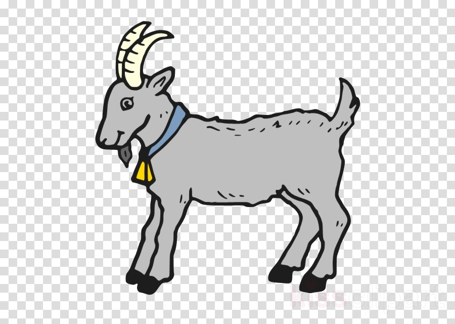 goats goat burro cartoon goat.