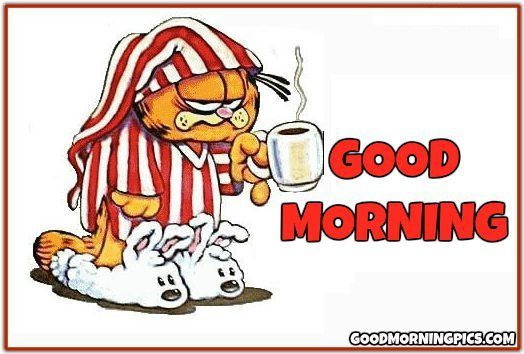 Good morning funny garfield.