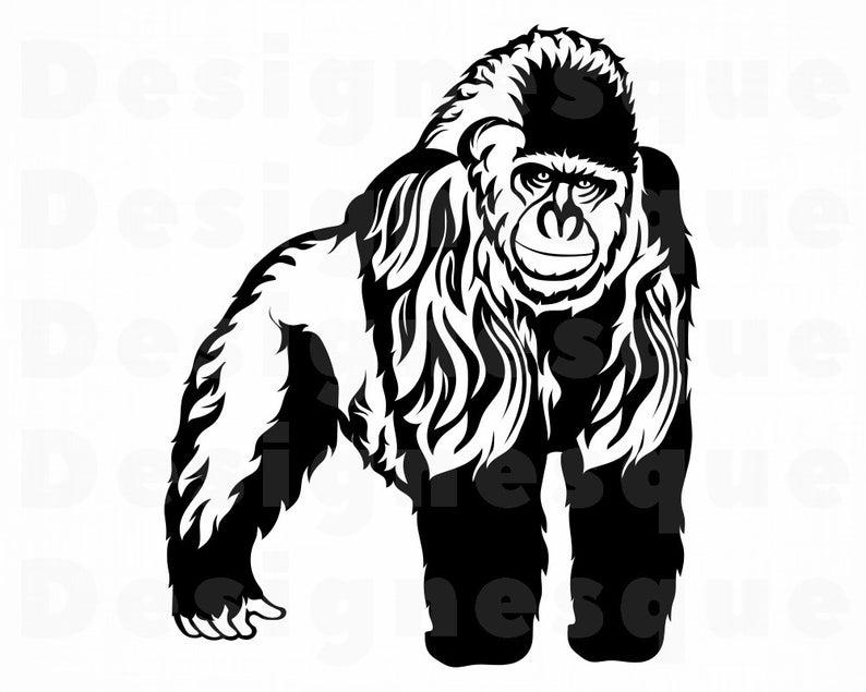 Gorilla SVG, Gorilla Clipart, Gorilla Files for Cricut, Gorilla Cut Files  For Silhouette, Gorilla Dxf, Gorilla Png, Eps, Gorilla Vector.