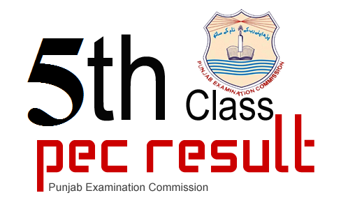 PEC 5th Class Result 2019 Online Gazette Download PDF All.