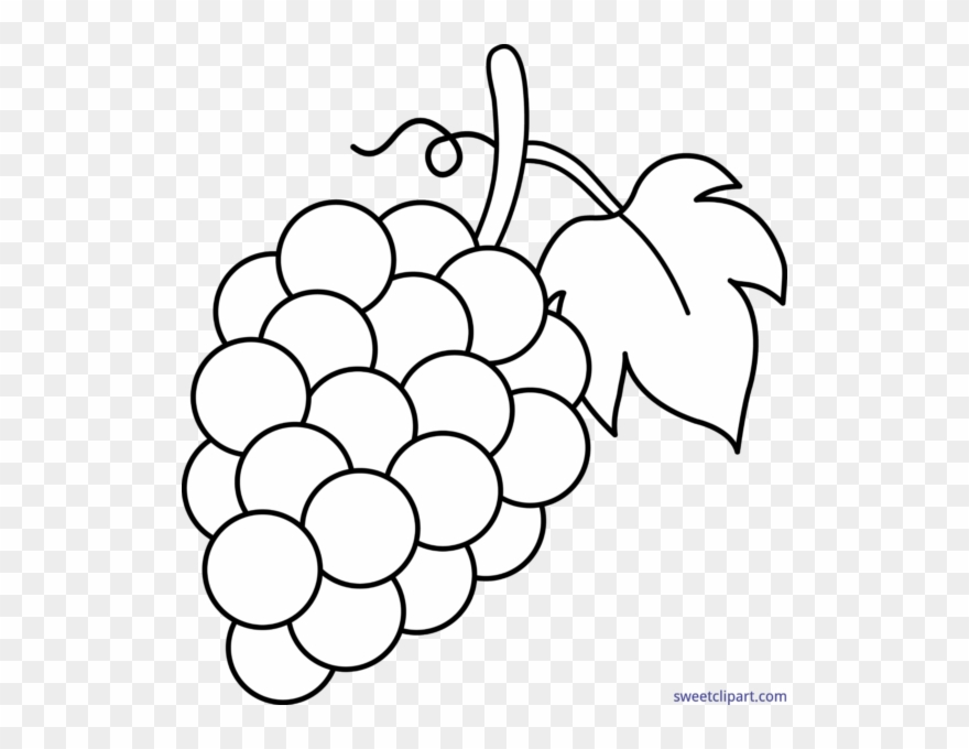 Grape Clipart Black And White.