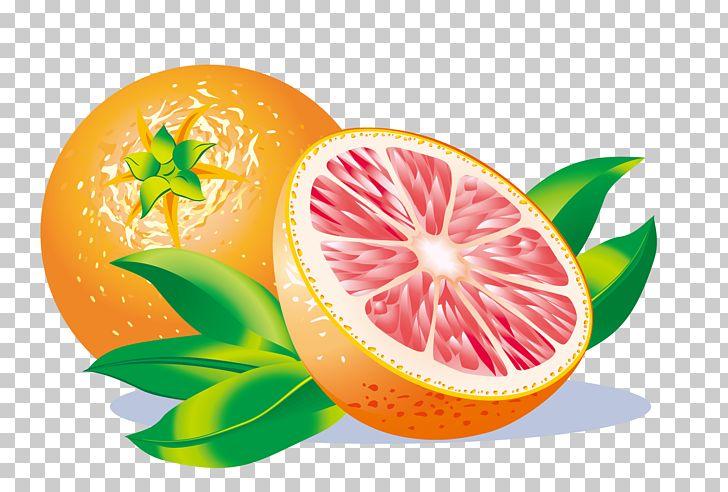 Grapefruit Juice Grapefruit Juice Lemon PNG, Clipart, Citric Acid.