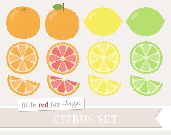 Citrus Fruit Clipart, Fruit Clip Art, Lemon Clipart, Orange Clipart.