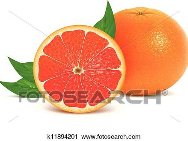 Free Grapefruit Clipart, Download Free Clip Art on Owips.com.
