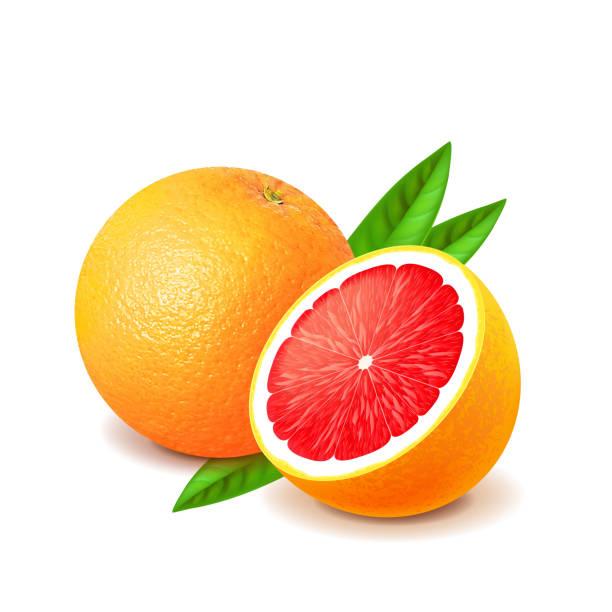 Best Grapefruit Illustrations, Royalty.