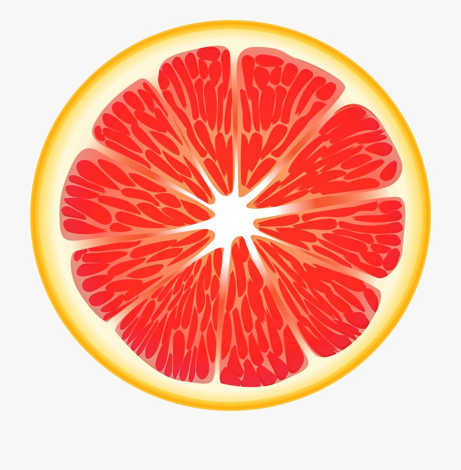 Fruits Transparent Slice.