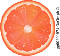 Grapefruit Clip Art.