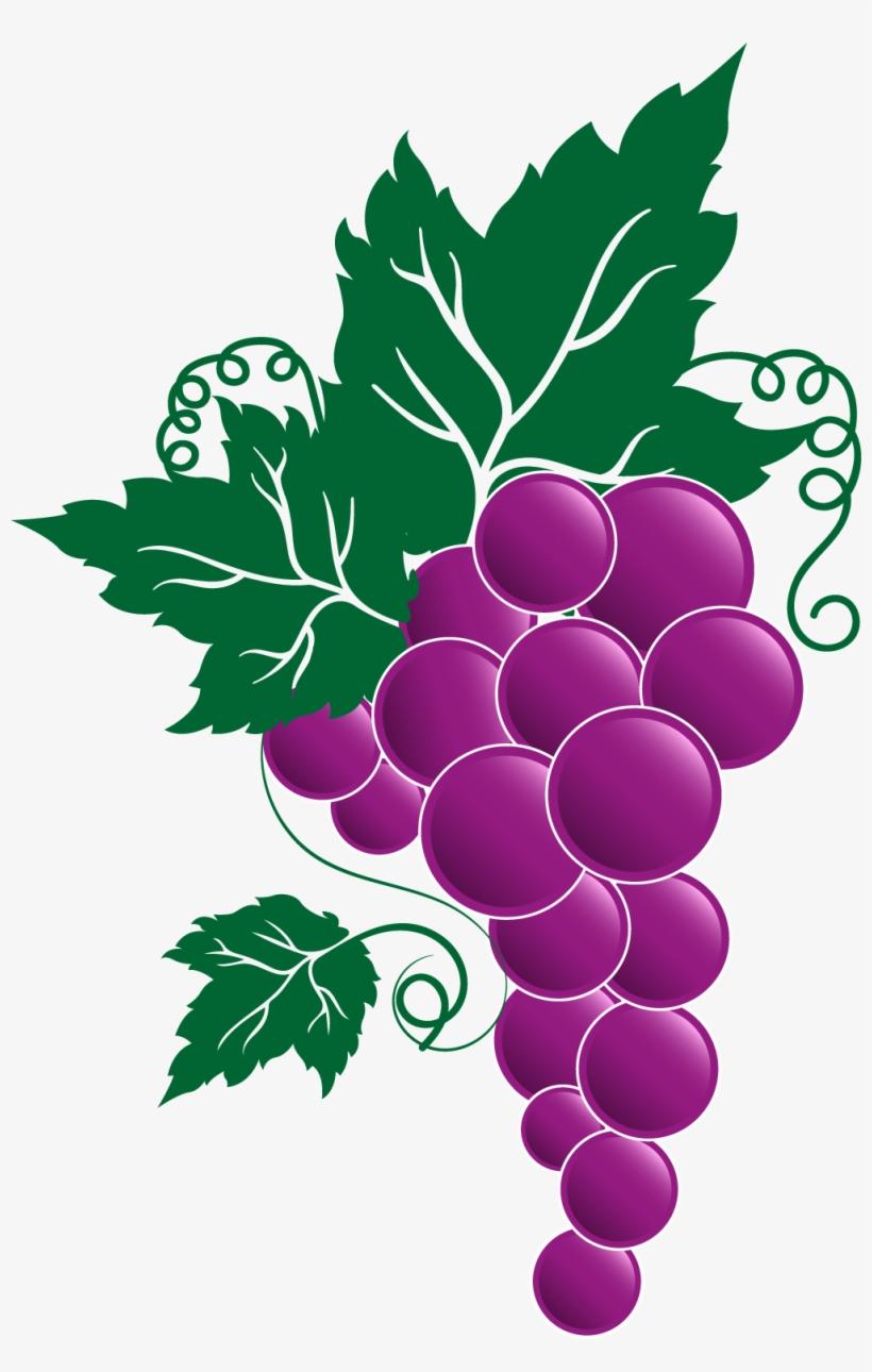 Grape Png Transparent Free Images.