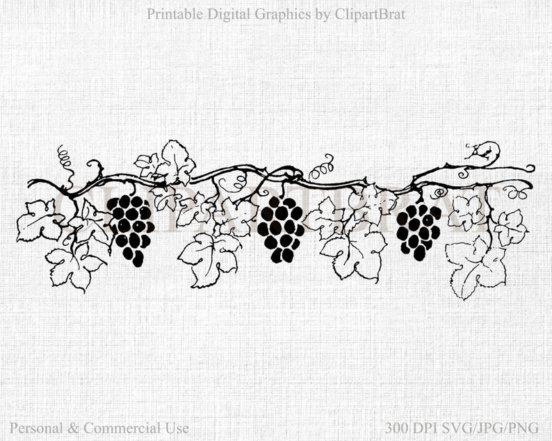 GRAPE VINE CLIPART Commercial Use Clipart Grapes Digital Collage sheet  Grape Vine Fabric Transfer Clipart Vector Clipart Jpg/Png/Svg.