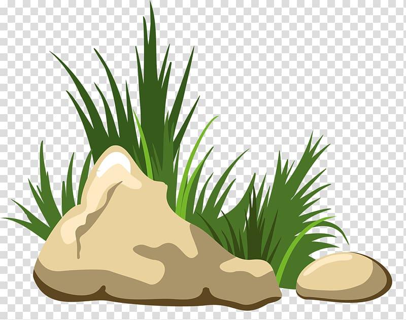 Rocks beside grasses illustration, Rock , Grass stone.