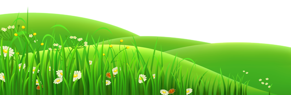 Transparent Flowers and Grass PNG Clipart.