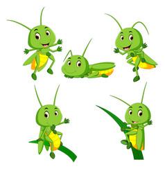 Grasshopper Clipart Vector Images (66).