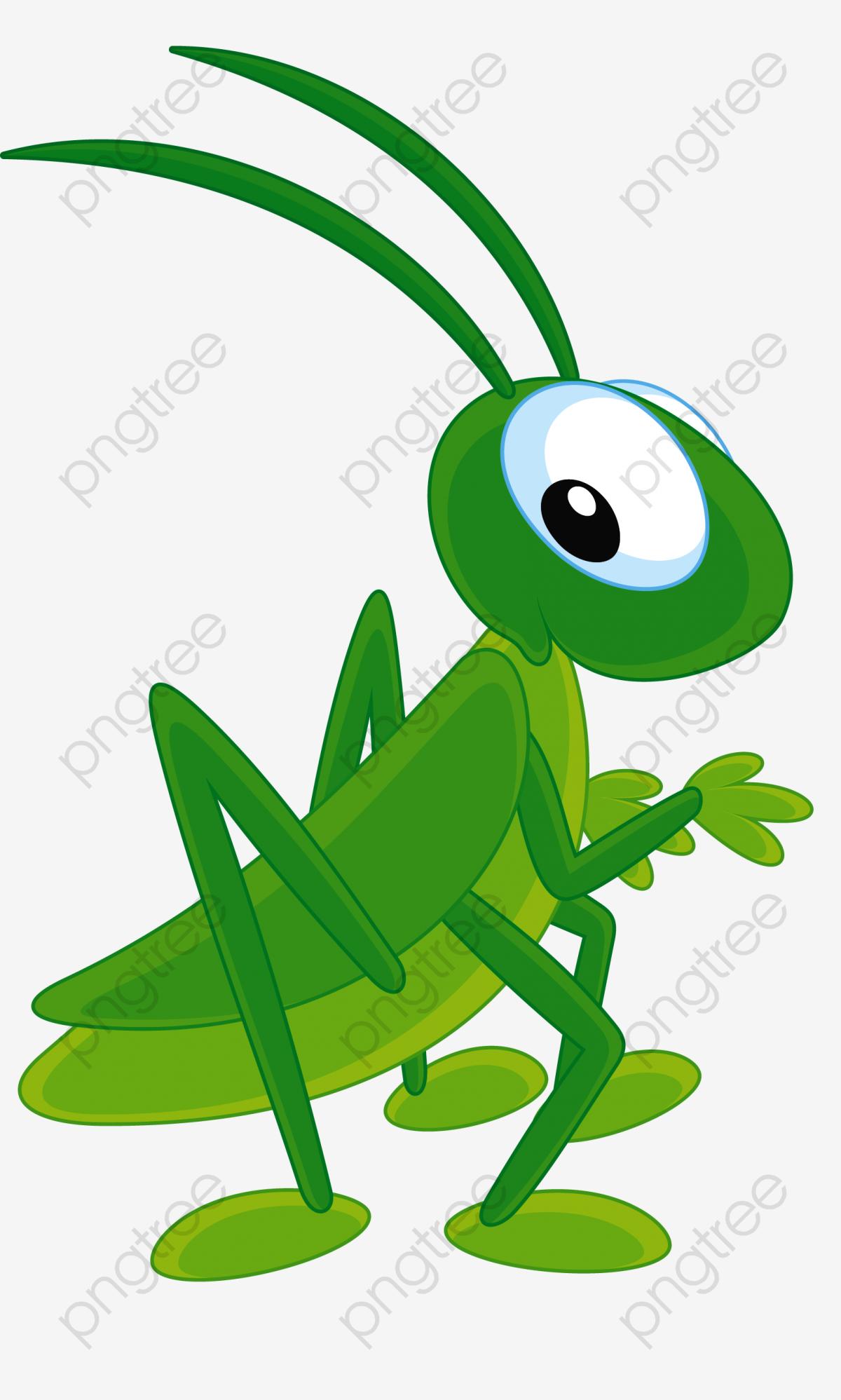Green Grasshopper, Grasshopper Clipart, Migratory Locust.