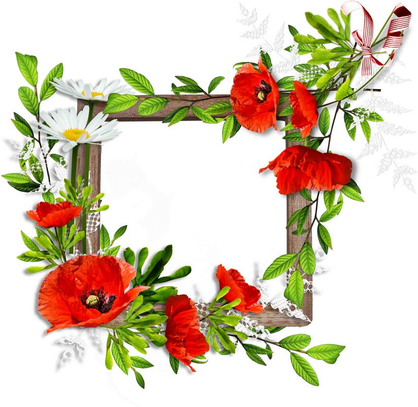 Clipart gratuit bordure fleurs 6 » Clipart Station.