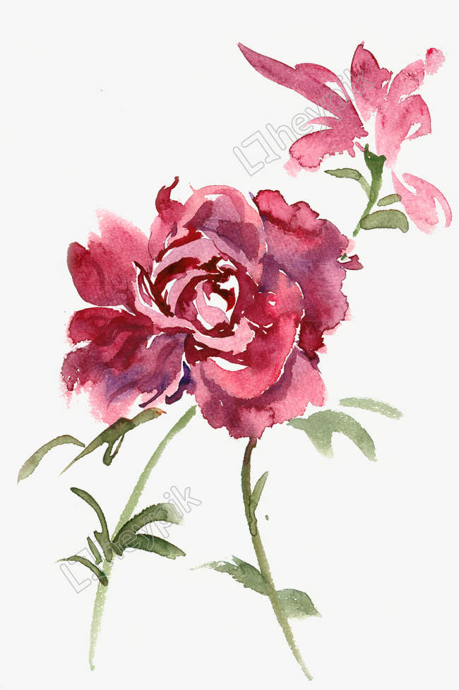 Download Free png image Vecteur gratuit: Aquarelle de fleur.