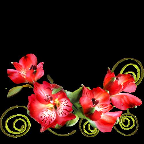 Clipart gratuit bordure fleurs 5 » Clipart Station.