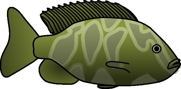 Green Fish Clip Art at Clker.com.