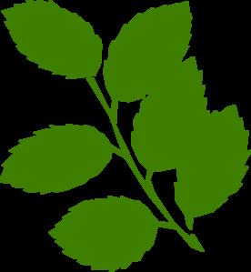 Green Leaves Clip Art at Clker.com.