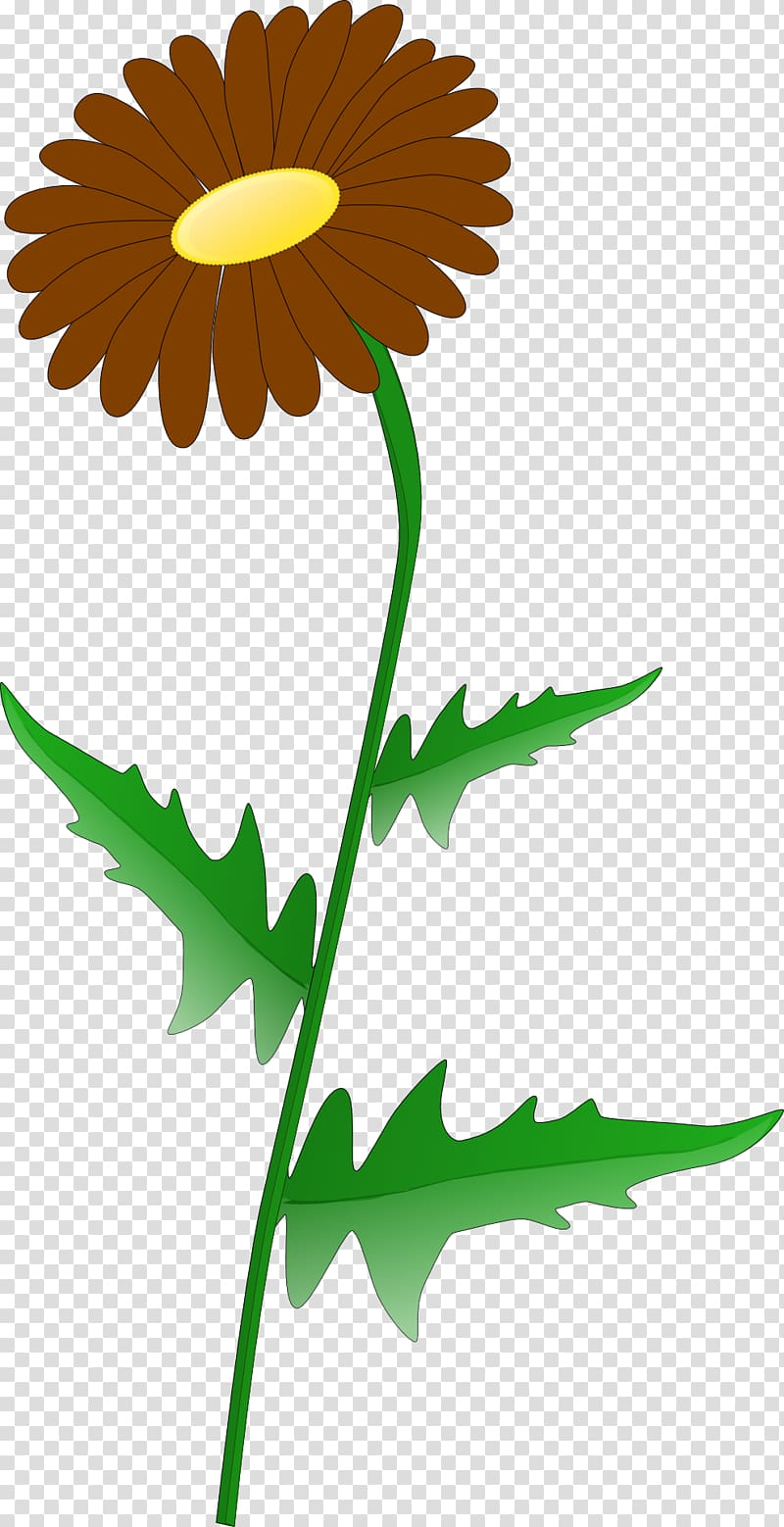 Greenery border transparent background PNG clipart.