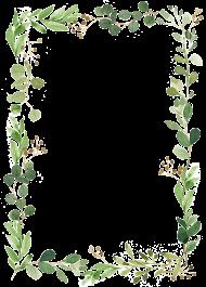 Download leaf border cartoon transparent.