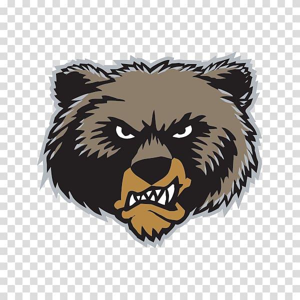 Memphis Grizzlies Vancouver Grizzlies Montana Grizzlies.