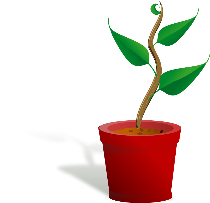 Free Clipart: Plant growing.