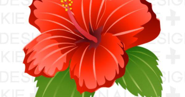 Clipart gumamela flower.