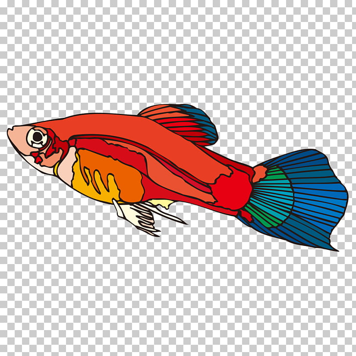 Cartoon Fish Guppy, Cartoon fish PNG clipart.