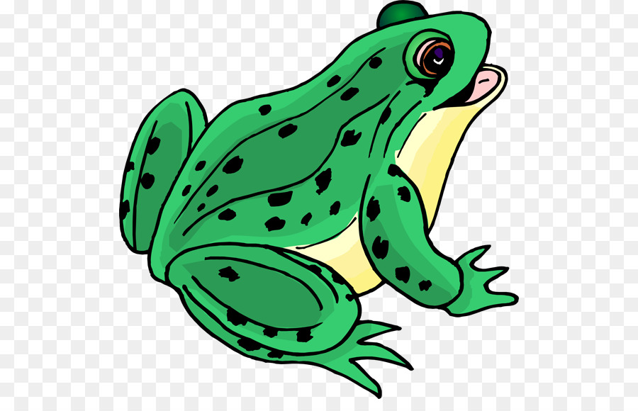 Frog Cartoon clipart.