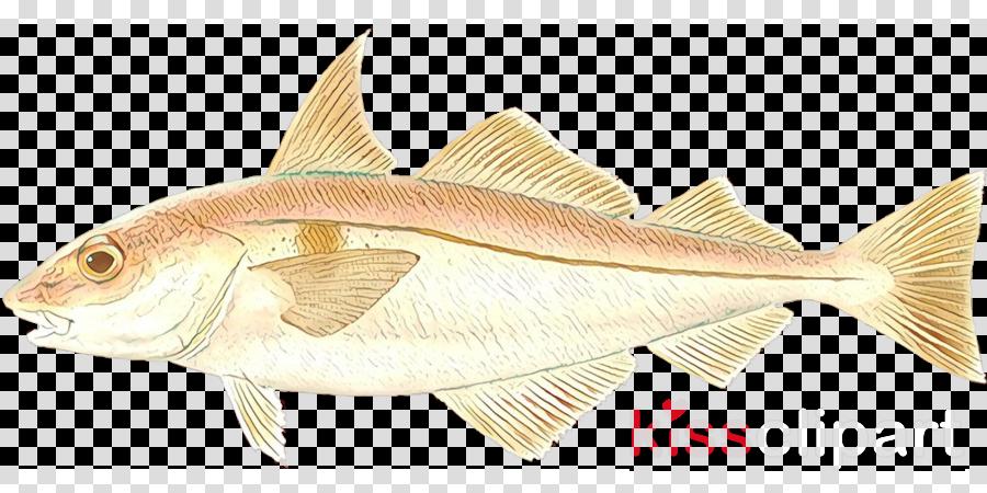 fish fish fin haddock cod clipart.