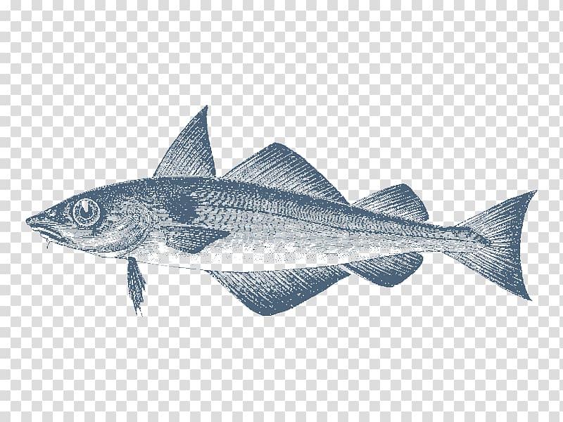Cod Haddock Sardine Fin Gadidae, shoal of fish transparent.
