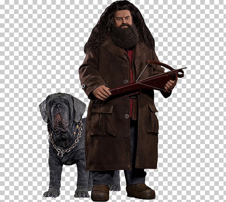 Robbie Coltrane Rubeus Hagrid Harry Potter and the.